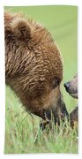 Grizzly Bear And Cub In Katmai Hand Towel