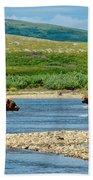 Grizzly Bear Communication In The Moraine River In Katmai  Np-ak Bath Towel