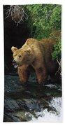 Grizzly Bear Fishing Brooks River Falls Bath Towel