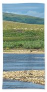 Grizzly Bear Stalking A Gull In The Moraine River In Katmai National Preserve-alaska Bath Towel