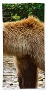 Grizzly Bear Very Close In Moraine River In Katmai National Preserve-ak Bath Towel
