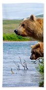 Grizzly Bears Peering Out Over Moraine River From Their Safe Island Bath Towel