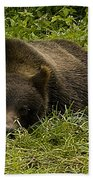 Grizzly Cub  #0863 Bath Towel