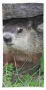 Groundhog Hiding In His Cave Bath Towel