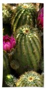 Grouping Of Cactus With Pink Flowers Bath Towel