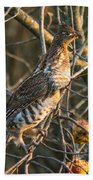 Grouse In An Apple Tree Bath Towel