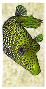 Guinea Fowl Puffer Fish In Green Bath Towel