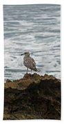 Gulls Podium  Bath Towel