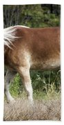 Haflinger 1 Bath Towel