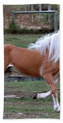Haflinger Stallion Bath Towel