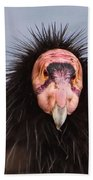 Handsome California Condor Bath Towel