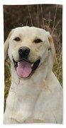 Happy Labrador Bath Towel