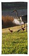 Happy Sandhill Crane Family - Original Bath Towel