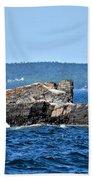 Harbor Rocks Bath Towel