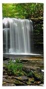 Harrison Wright Falls Bath Towel