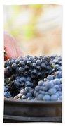 Harvest At Vineyard In Santa Cruz Bath Towel