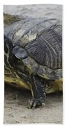 Hatteras Turtle 2 Bath Towel