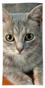 Hattie The Kitty Bath Towel
