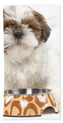 Havanese With Dog Bowl Bath Towel