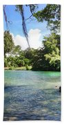 Hawaiian Landscape Bath Towel