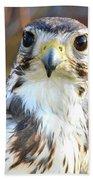 Hawk Eyes Bath Towel