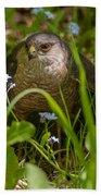 Hawk In The Grass Bath Towel