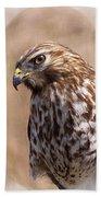 Hawk - Sphere - Bird Hand Towel