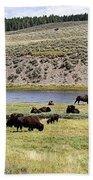 Hayden Valley Bison Herd In Yellowstone National Park Bath Towel