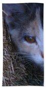 Haystack Cat Bath Towel