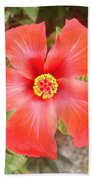 Head On Shot Of A Red Tropical Hibiscus Flower Bath Towel