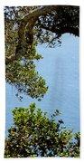 Heart Of Nepenthe - Big Sur Bath Towel