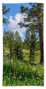Heaven In The High Country Bath Towel