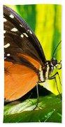 Hecale Longwing Butterfly Bath Towel