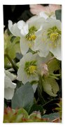 Hellebore And Friends Bath Towel