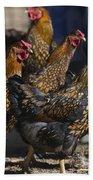 Hens Of Distinction Bath Towel