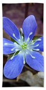 Hepatica Blue Bath Towel