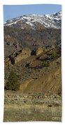 Herd Of Elk   #7740 Bath Towel