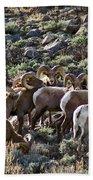 Herd Of Horns Bath Towel