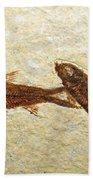 Herring Fish Fossil Bath Towel