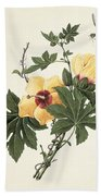 Hibiscus And Butterfly Bath Towel