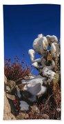 High Desert Snow 2 Hand Towel