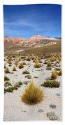 High In The Chilean Altiplano Bath Towel