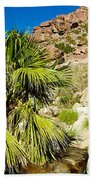 Hikers At Oasis On Borrego Palm Canyon Trail In Anza-borrego Desert Sp-ca  Bath Towel