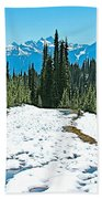 Hiking In Spring In Revelstoke National Park-british Columbia  Bath Towel