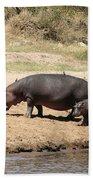 Hippo Mum And Calf Bath Towel