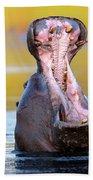 Hippopotamus Displaying Aggressive Behavior Hand Towel