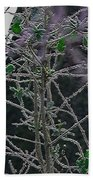 Hoars Frost-featured In Nature Photography Group Bath Towel