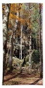 Hocking Hills Trees Bath Towel
