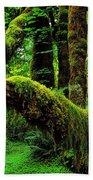 Hoh Rainforest Bath Towel