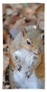 Homosassa Springs Squirrel 2 Bath Towel